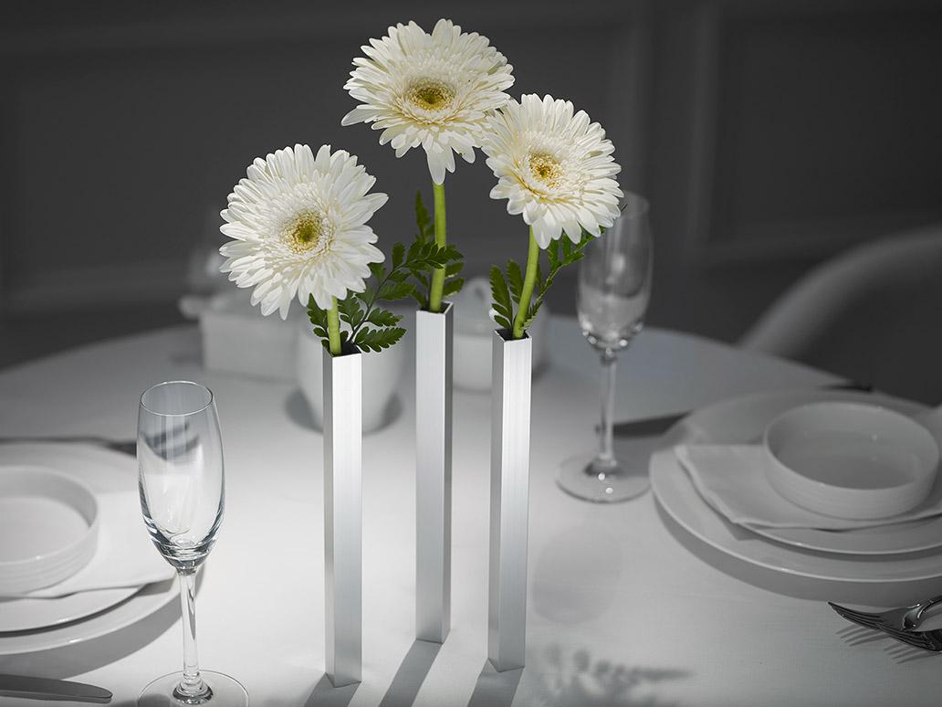 Vase magnétique